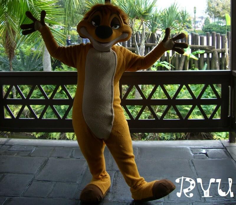 ティモン(Timon)ライオン・キング(The Lion King)