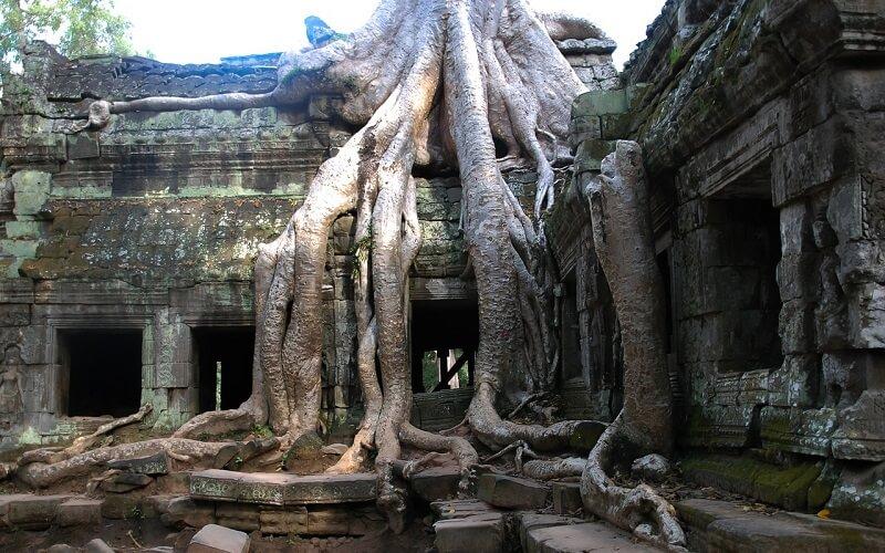 Beng Mealea(ベンメリア遺跡)・Cambodia(カンボジア)