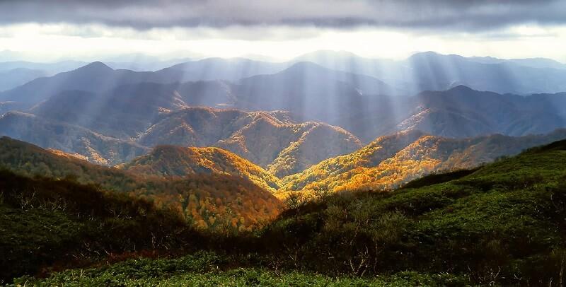 Shirakami-Sanchi(白神山地)・Japan(秋田県・青森県)