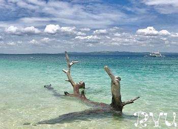 beautiful beache(美しいビーチ)