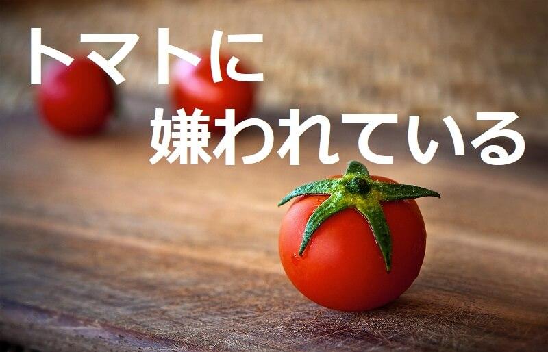 トマトに嫌われている(Hated by tomatoes)