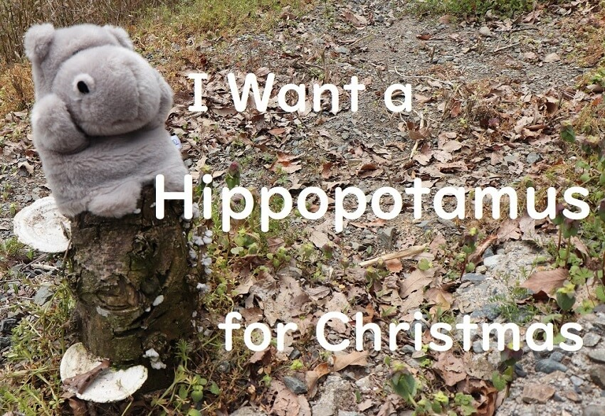 I Want a Hippopotamus for Christmas(クリスマスにはカバが欲しい)