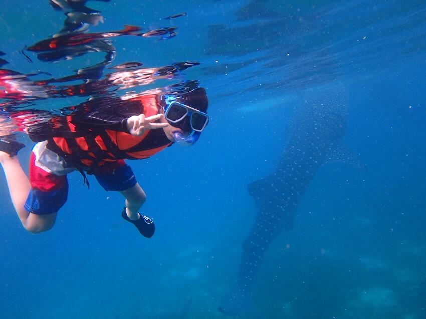 短期間留学(セブ島サメと泳ぐ)